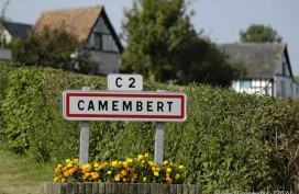 camembert049©D. Commenchal